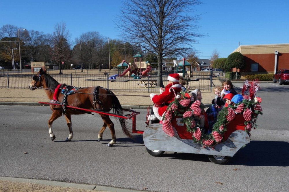 Sleigh Rides & Petting Zoo (Little Harding)
