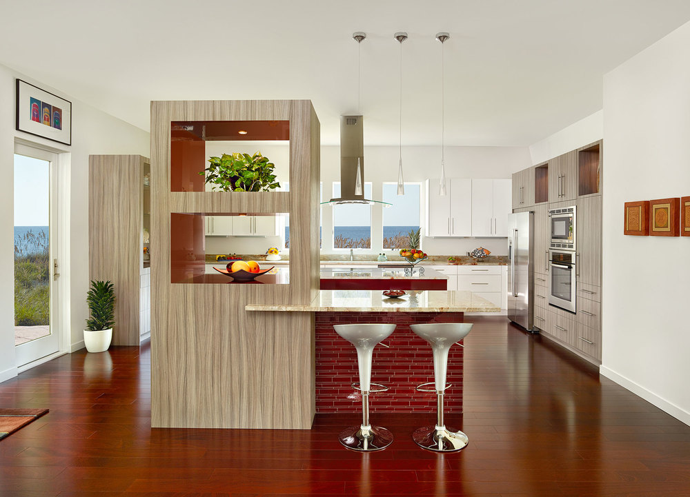 Charleston SC Contemporary Kitchen.jpg