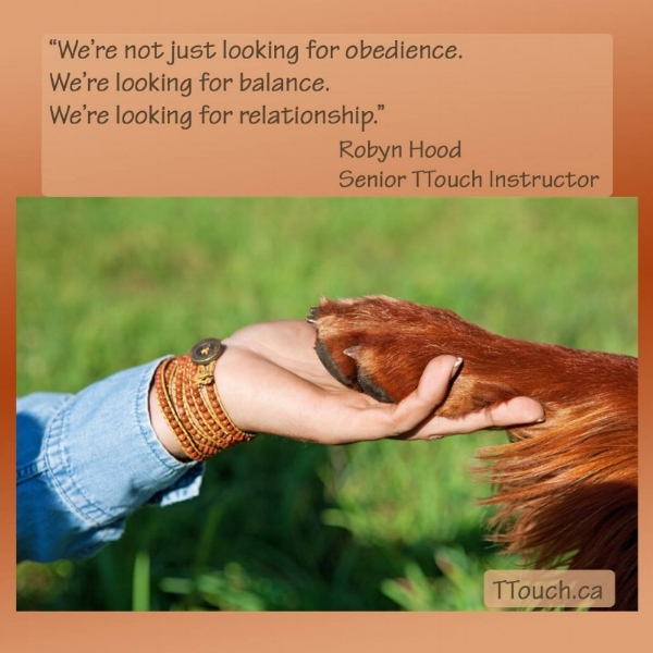 "Image: ""We're not just looking for Obedience. We're Looking for Balance. We're Looking for Relationship."""