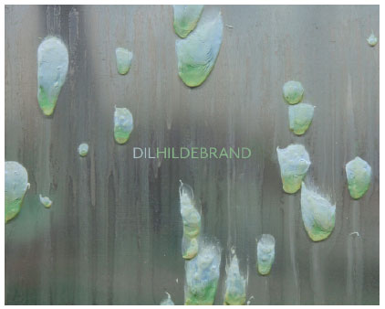 Cover - The Paintings of Dil Hildebrand