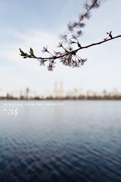 peggywongphotography_newyorkcity1