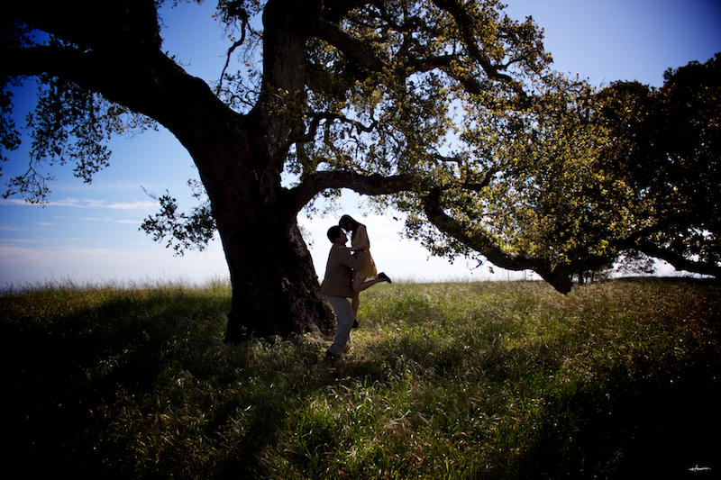 Santa clara county engagement photoshoot tammi dara59