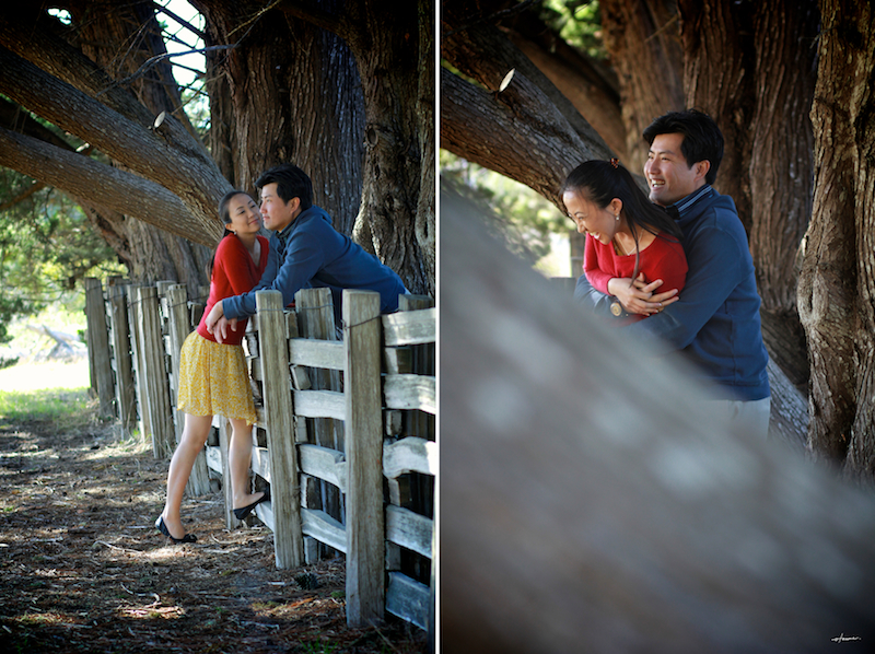 Santa Cruz Natural Bridges Engagement Shoot
