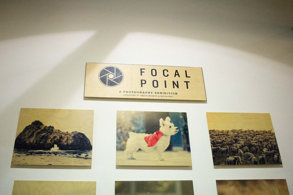 Steamer Lee Dog Photography - Focal Point Mission Viejo WoodSnap Exhibit - 3.jpg