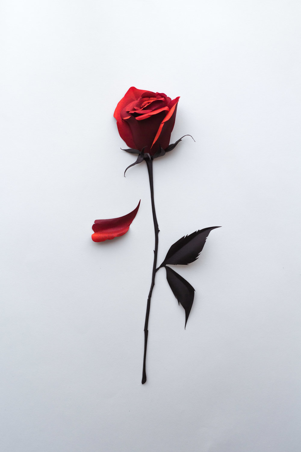 Rose-Sculpture