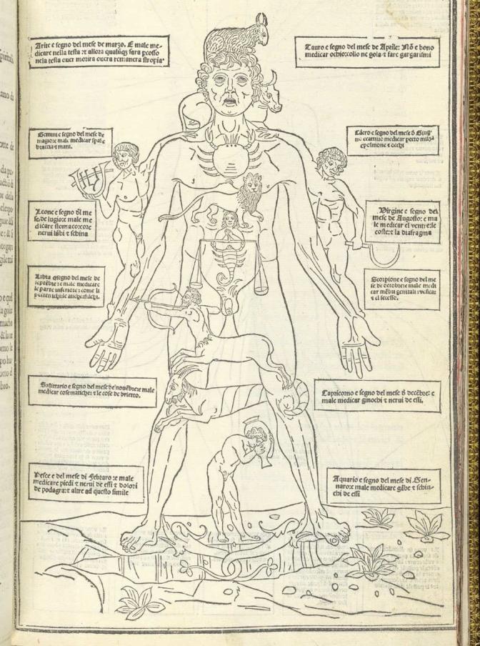 Zodiacal-Body-672x904.jpg