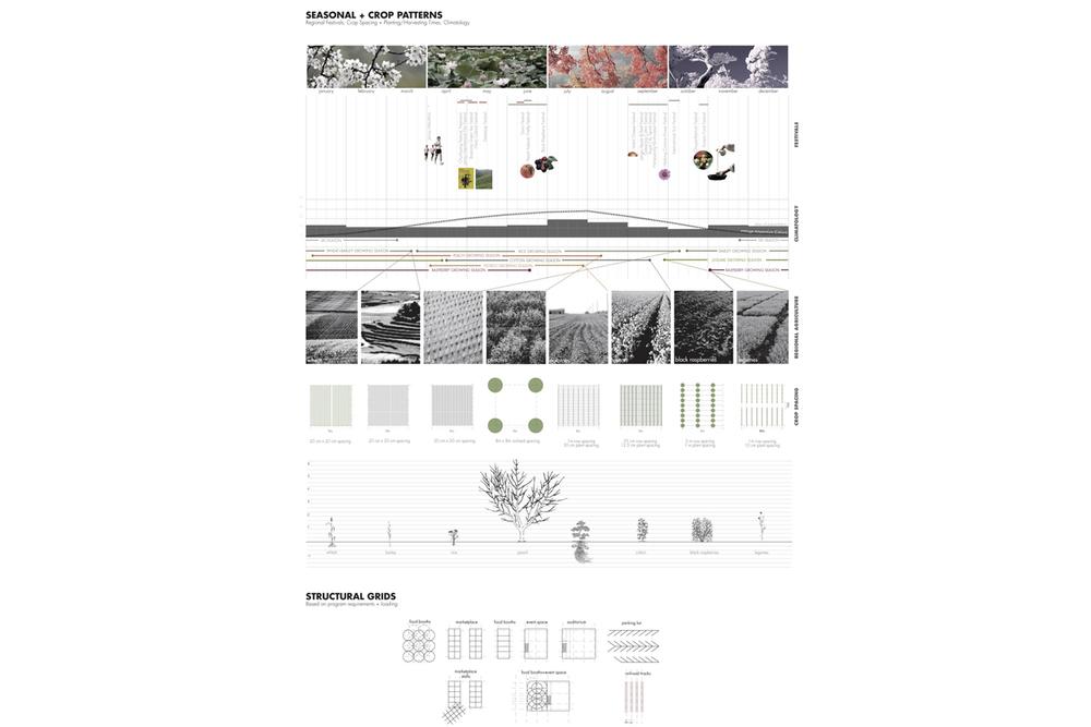 ACT_Infographics_10.jpg