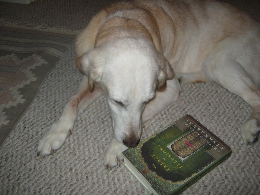 an avid reader.JPG