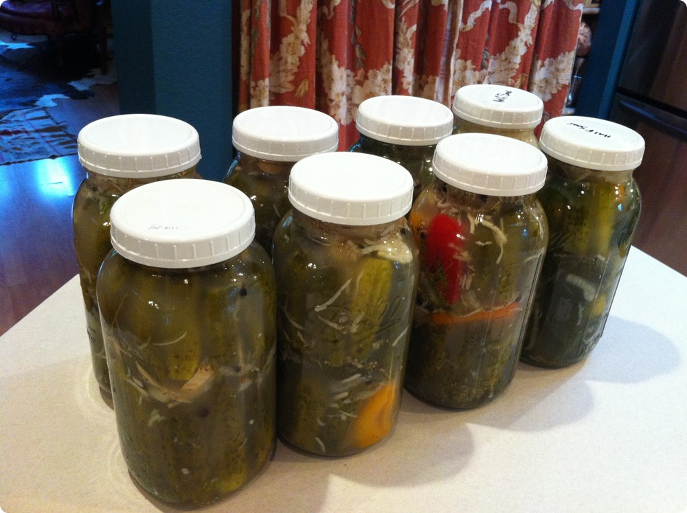lacto fermented pickles.JPG