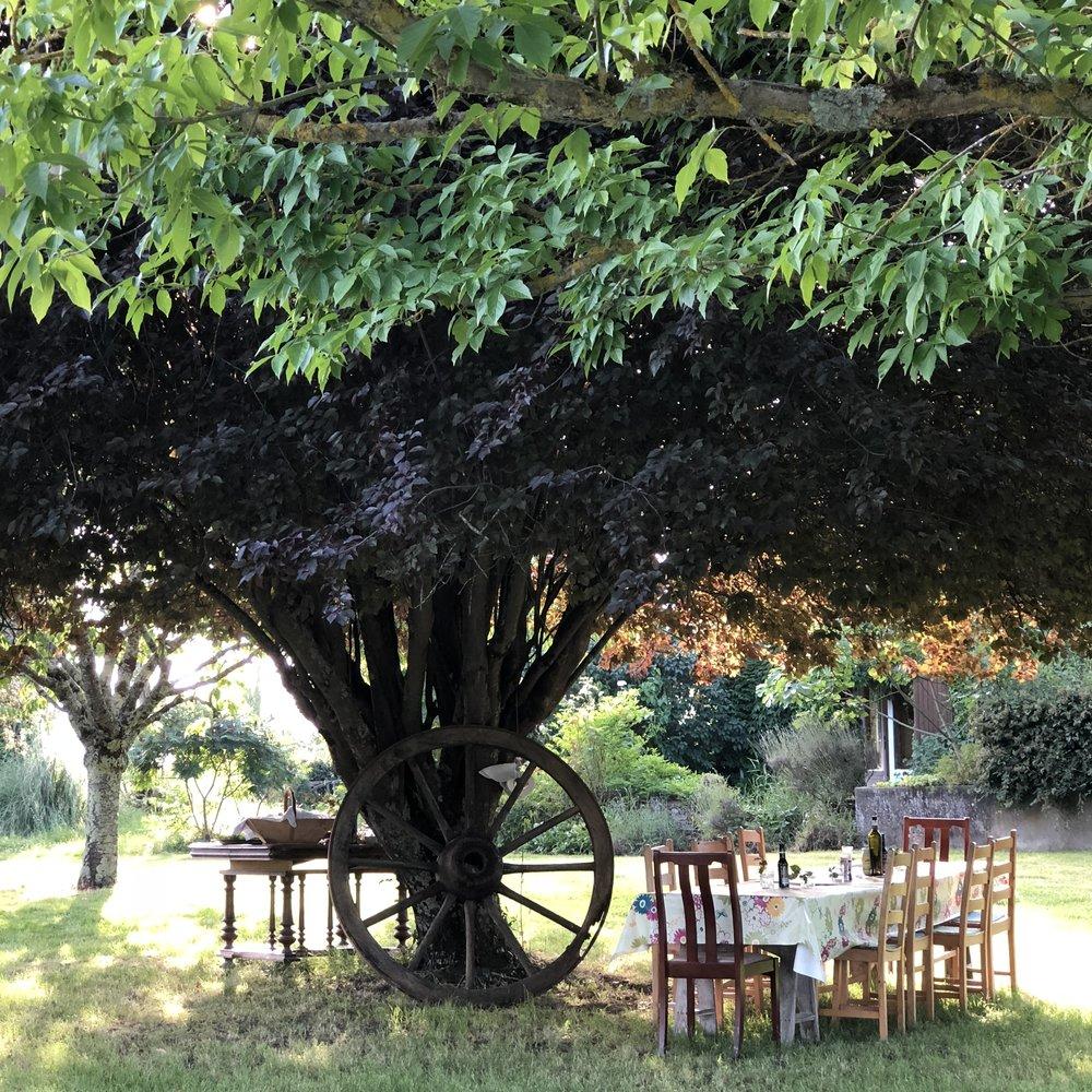 dining in the garden al fresco…