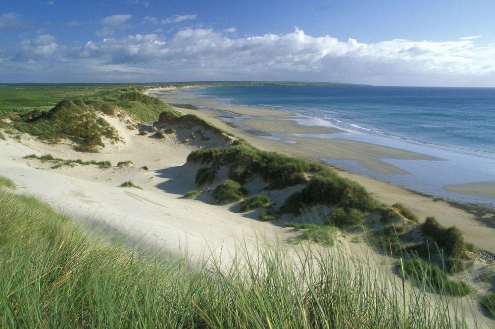Sinclair's Bay, Caithness