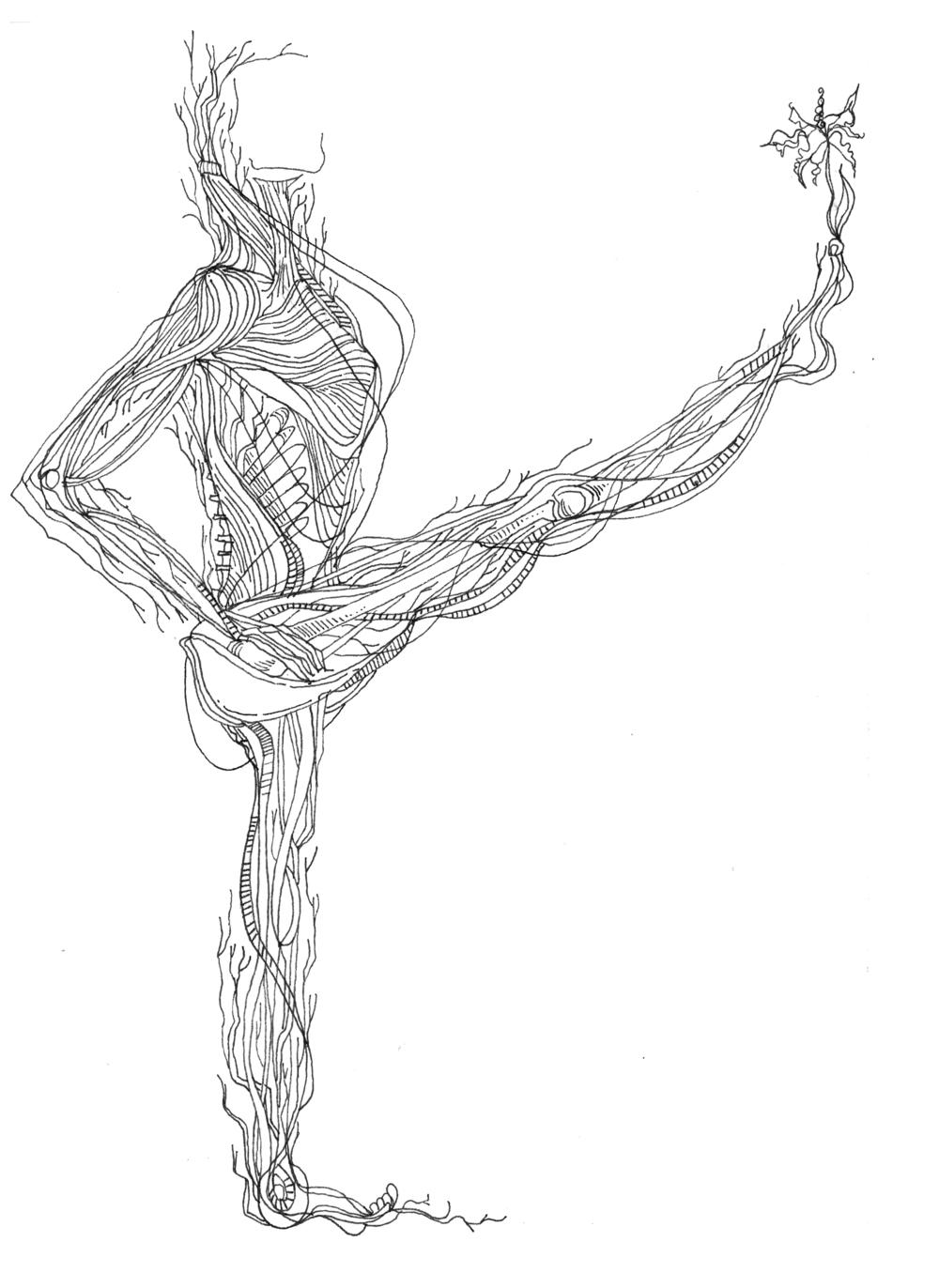 yoga; asana; Utthita Pārśvasahita