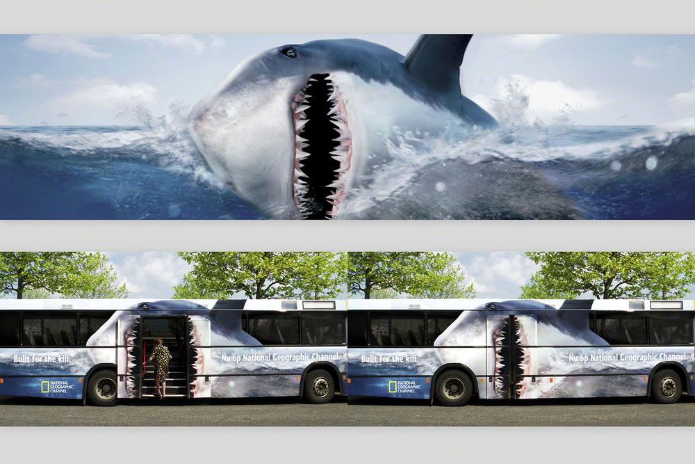 ngeo_shark.jpg