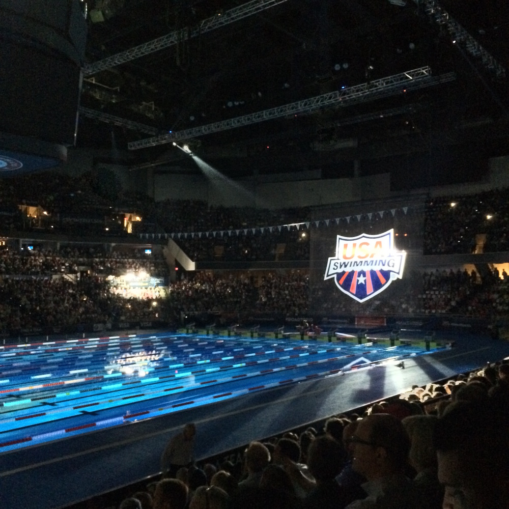 USA Swimming.JPG