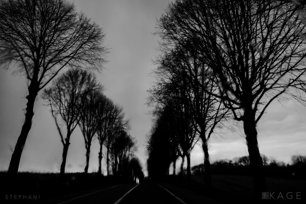 STEPHANI-road-03.jpg
