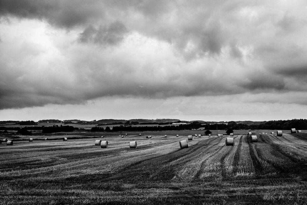 Dark skies over Denmark