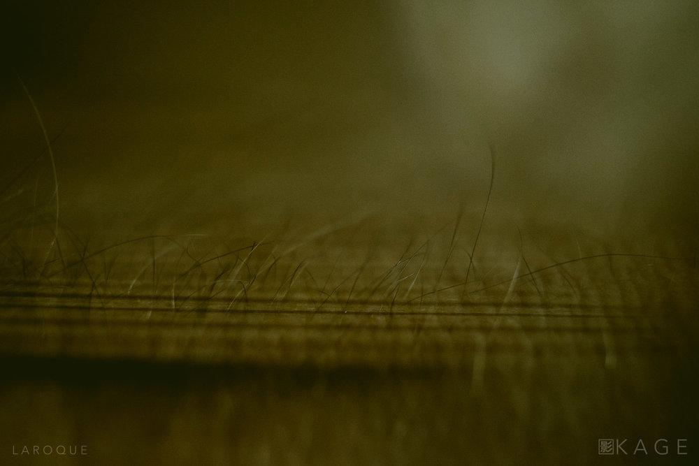 LAROQUE-breakingwaves-09.jpg