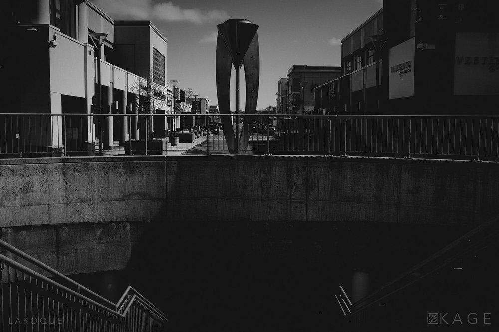 LAROQUE-vaguely-06.jpg