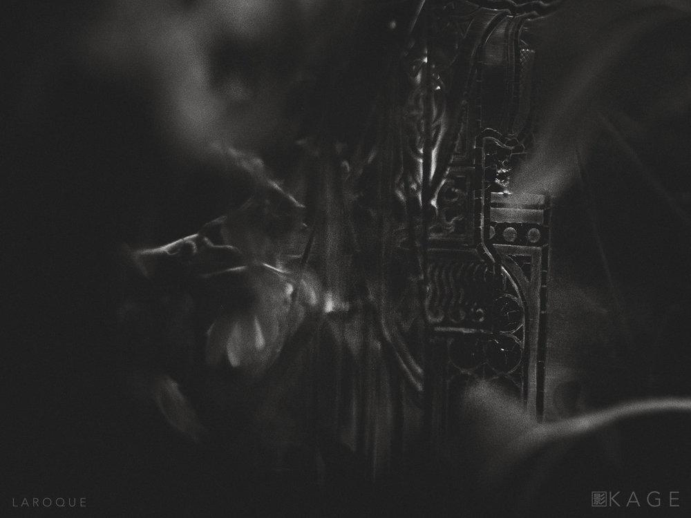 LAROQUE-veil-04.jpg
