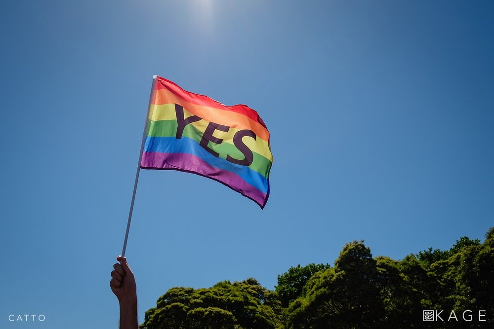 Yes supporters celebrate the result of Australia's postal survey on marriage equality in Sydney.