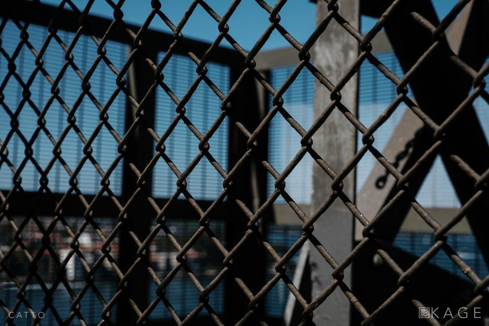 RC18HB 0789 NBP ©Robert Catto Not Print Quality.jpg