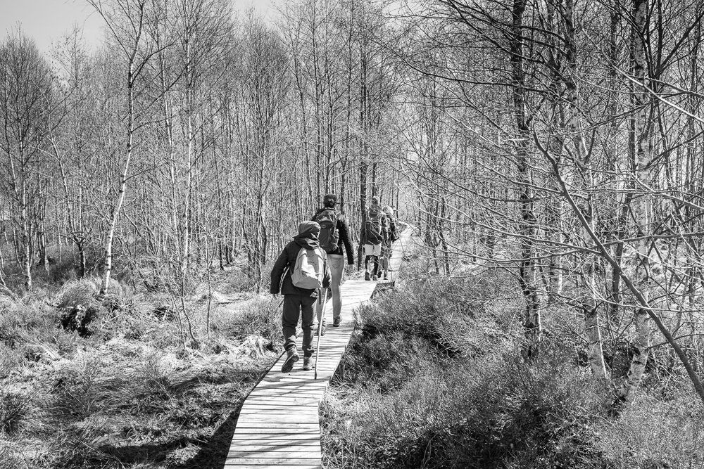 STEPHANI-hike-10.jpg