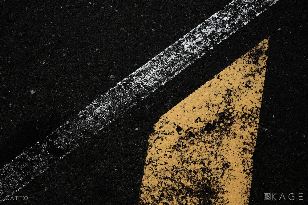 RC1890 7856 NBP © Robert Catto Not Print Quality.jpg