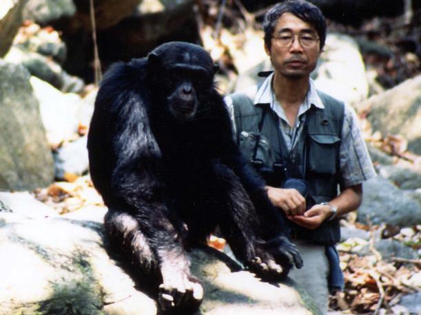 Nishida with chimp Toshibo