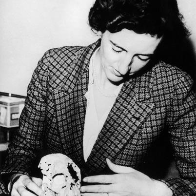 Mary Leakey, with Proconsul, circa 1948.