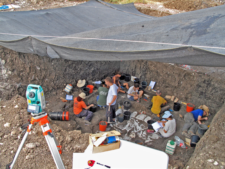 Excavation of 'Ein Qashish