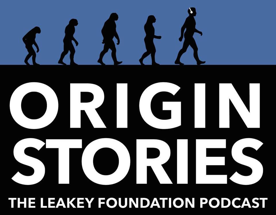 Introducing our new podcast Origin Stories! Click here to listen.