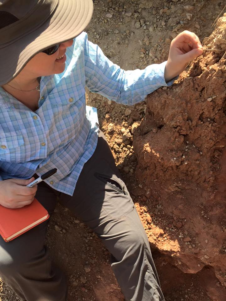 This is a photo of me trying to coax a stick bug off of the Kiahera Formation paleosol we were measuring. Photo credit:  Lauren Michel