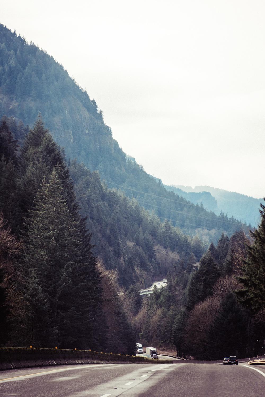 Pacific Northwest Adventures 11.02.15-14.jpg