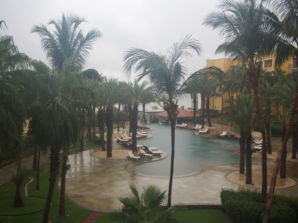 This was August in Cabo, and they hadn't had a drop of precipitation in almost 3 years, then BAM.