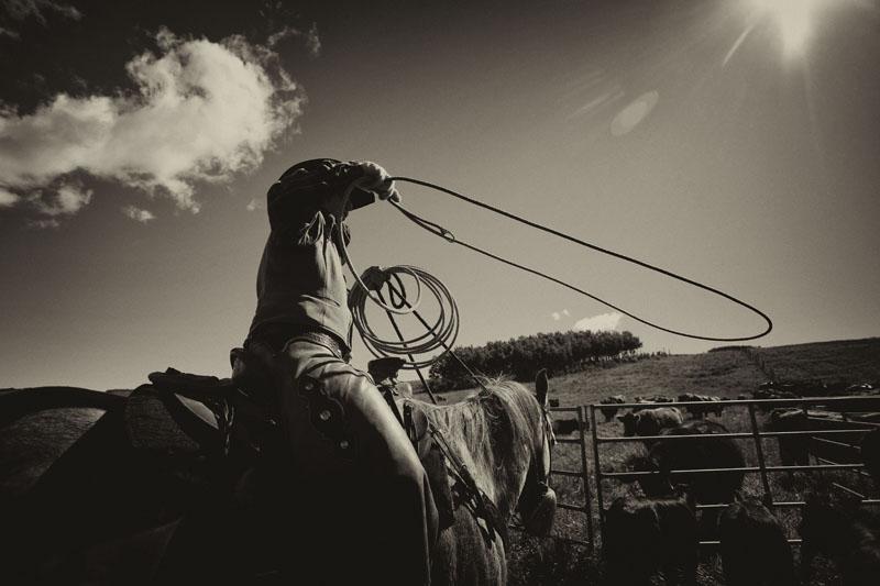 western9.jpg
