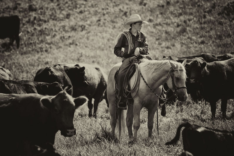western20.jpg