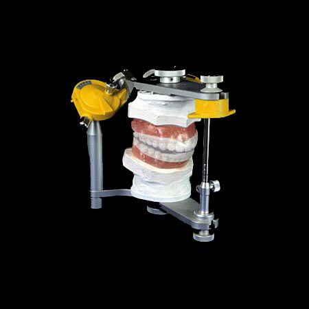 Articulator with Study Casts