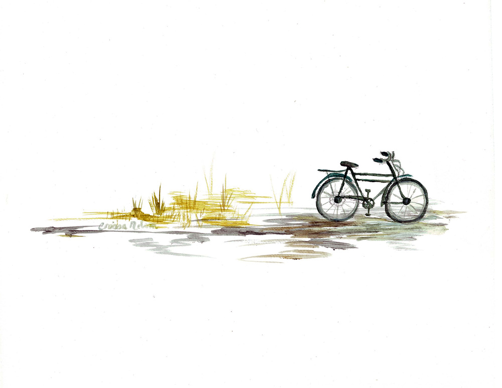 Bicycle in Charcoal and Mustard
