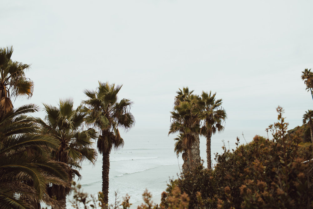 Encinitas Travel Photography Blog