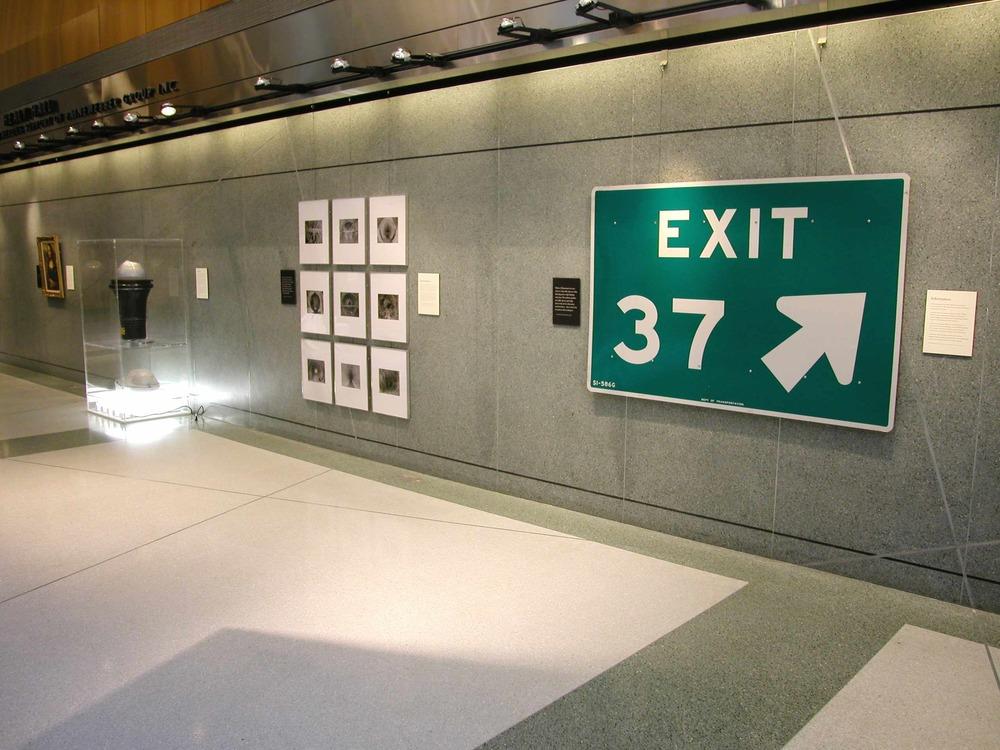 IonI exitsignlight 4.jpg