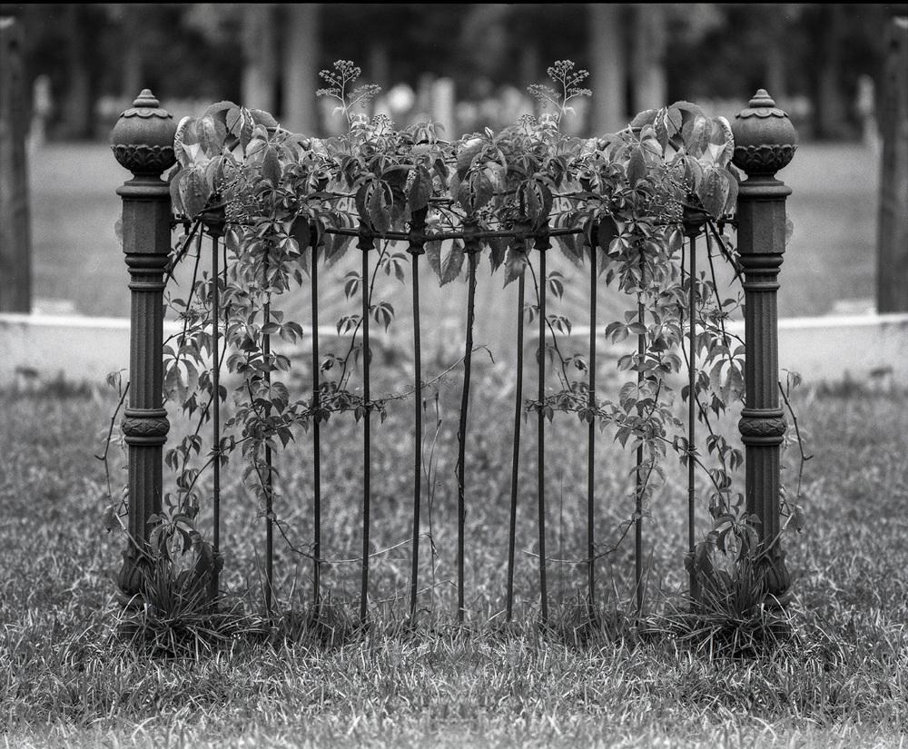 Untitled-2.jpg