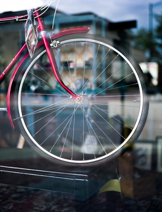 Camera: Mamiya AFD  Lens: 80mm 2.8  Film: ExpiredFUJICOLOR PRO 400H