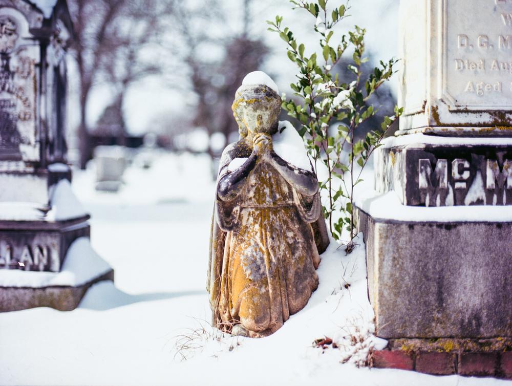 Mamiya snow485.jpg