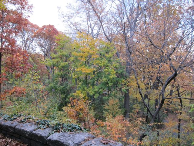 Autumn Fort Tryon.jpg