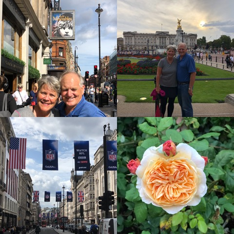 London by foot: we were most surprised to see the NFL banners hanging near the theater district!! And that rose in Kensington Gardens . . . spectacular!