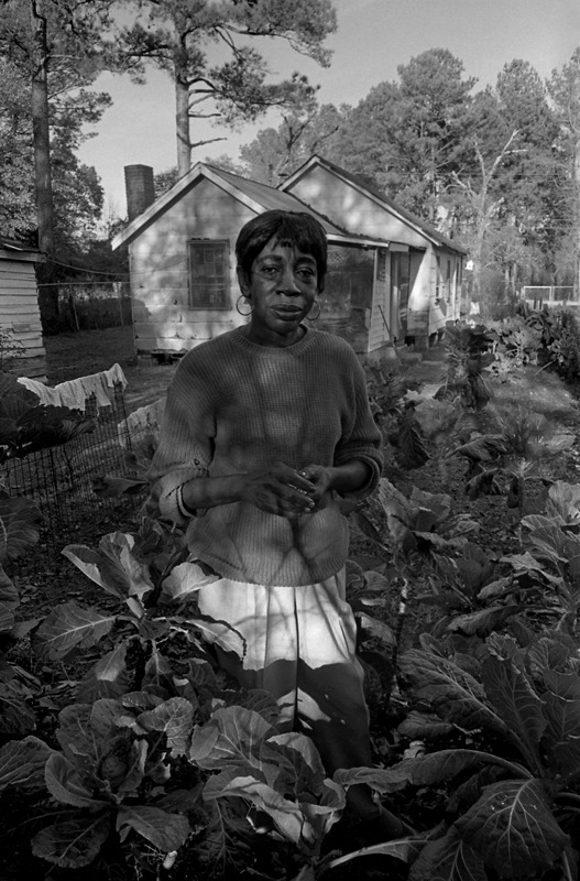 Mrs. Douglas and Her Collards, Columbia, SC