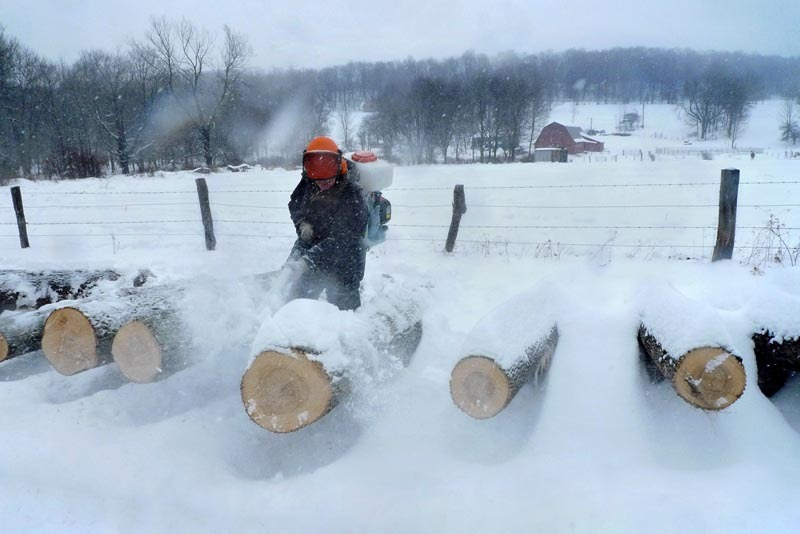Craig Olver Cleaning Logs, Honesdale, Pennsylvania  - for the American Forest Foundation