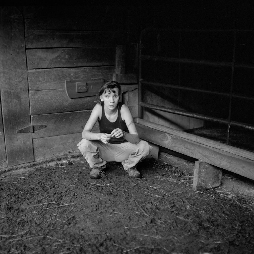 In the Barn, PawPaw, 2013.