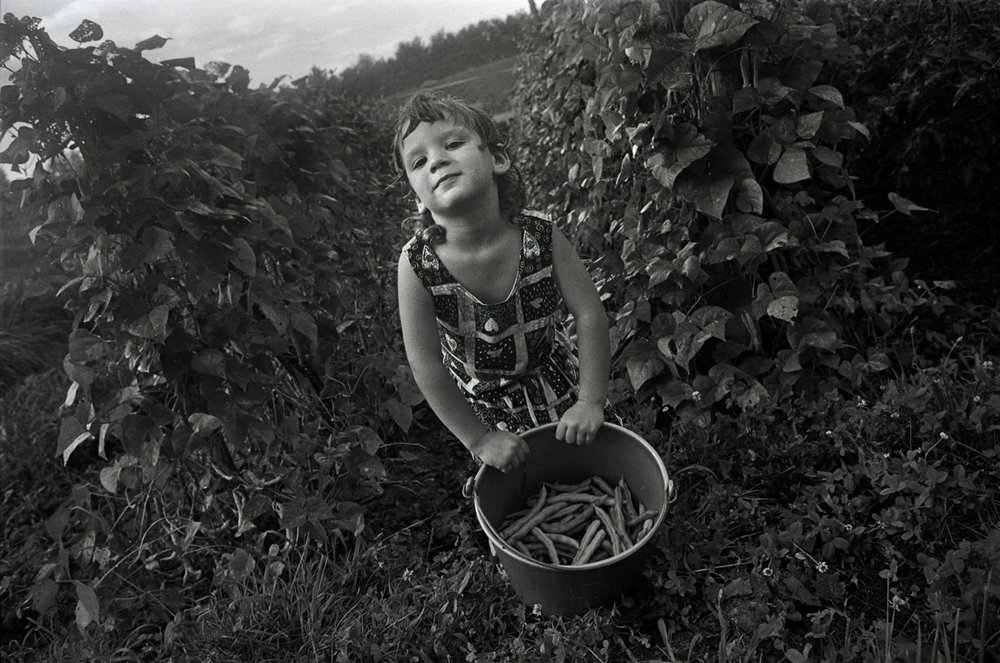 Kate Picking Beans in Granny Faye's Garden, Valdese, NC 1994