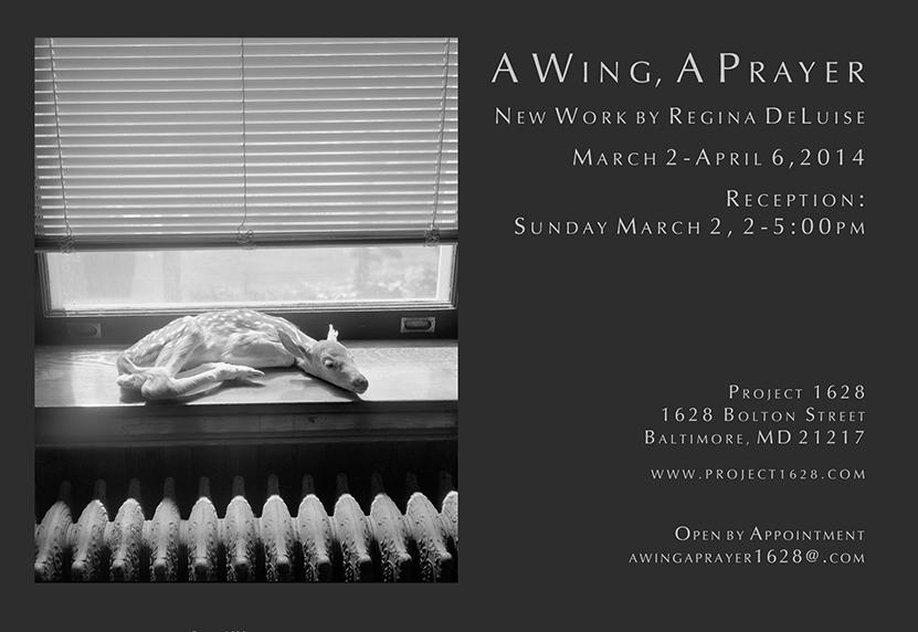 Regina Deluise invitation.jpg